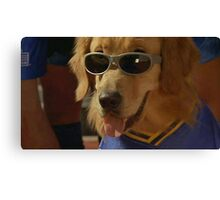 Cool Dog Canvas Print