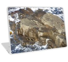 New products from Tassie Tawnie aka Susan Parsons Laptop Skin