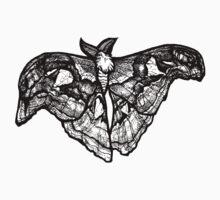 atlas moth by HiddenStash