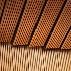 Sydney Opera House Detail II by Megan Raphael