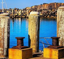 At The Marina by wallarooimages