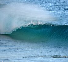 Amazing Wave by dpasqualephoto