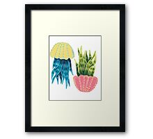 Mother-In-Law's Tongue Framed Print
