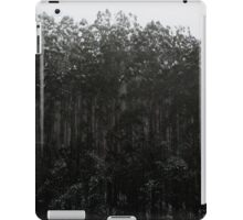 Snow Dusted Trees iPad Case/Skin