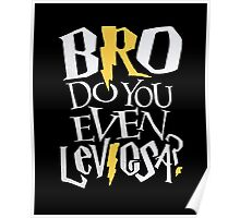 Bro do you even Leviosa? Poster