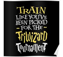 Train for the Triwizard Tournament Poster