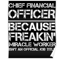 CHIEF FINANCIAL OFFICER BECAUSE FREAKIN' MIRACLE WORKER ISN'T AN OFFICIAL JOB TITLE Poster
