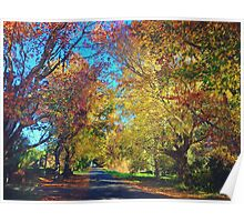Autumn Colours, Crookwell NSW  Poster