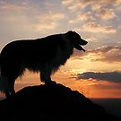 Soltice Sunset by meg price