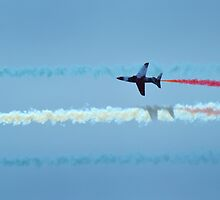 Lone Red Arrow  by Paul Shellard