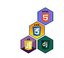 html5 css javascript django programming language stickers Photographic Print