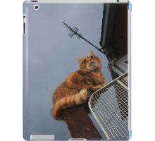 Ginger cat on gatepost iPad Case/Skin