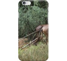 Teamwork. Horses and minder ploughing field iPhone Case/Skin