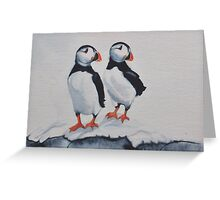 Puffins in snow Greeting Card