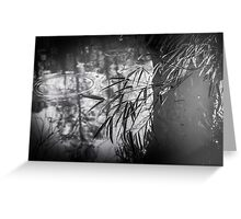 Ripples in the pond Greeting Card