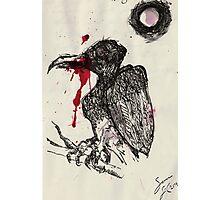 Vulture Doodle Photographic Print