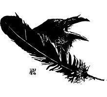Feather and Raven Photographic Print