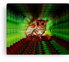 WIRED FOR SOUND Canvas Print