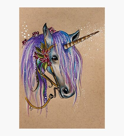 The Magical Faery Unicorn Photographic Print