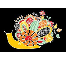 Cute Snail with Flowers & Swirls in Bright Colours Photographic Print