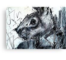 Rabbit Caught In Headlights Canvas Print