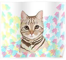 Tabby Kitten Splash Poster