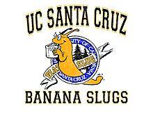 UC Santa Cruz Banana Slugs Photographic Print