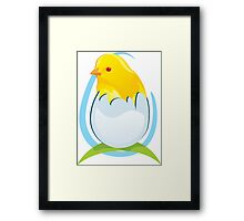 cute colored chicken Framed Print