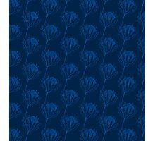 Protea - Blue  Photographic Print