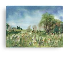 Cattails Landscape Canvas Print