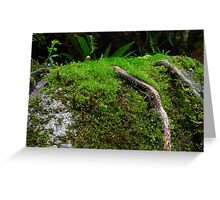 Fungi Regeneration Greeting Card