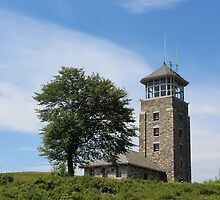 Lookout Tower by Linda Jackson