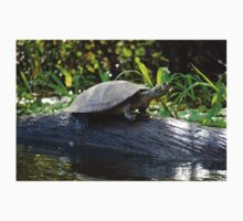 Water Turtle, Photographed in Pampas, Bolivia Baby Tee