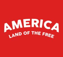 AMERICA LAND OF THE FREE by 2E1K