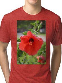 Red Gypsy Tri-blend T-Shirt