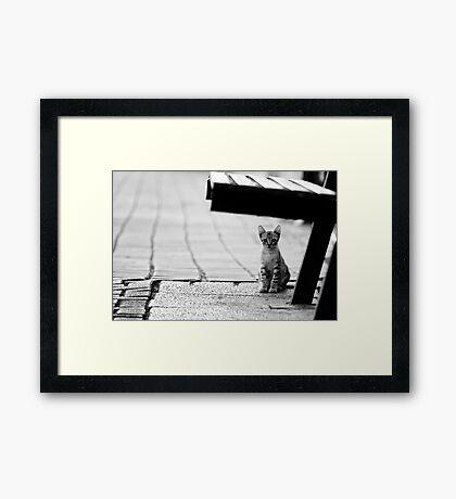 safe place Framed Print