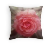 """ Focus on a old fashioned rose "" Throw Pillow"