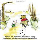 Where Do Bears Really Go?  by Rick  London