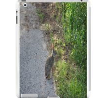 Time to hop iPad Case/Skin
