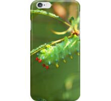 Promethea Caterpillar iPhone Case/Skin