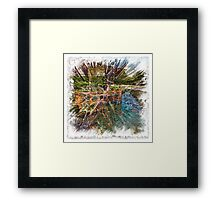 The Atlas Of Dreams - Color Plate 166 Framed Print