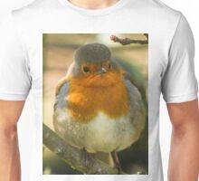 Robins rule Unisex T-Shirt