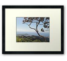 Hawaiian Trek Framed Print