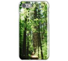 Tree Path iPhone Case/Skin