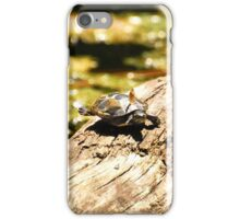 Cute Little Turtle  iPhone Case/Skin