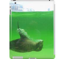 Water Angel iPad Case/Skin