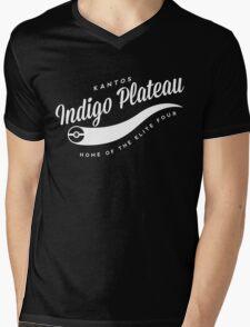 Indigo Plateau Mens V-Neck T-Shirt