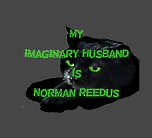 My Imaginary Husband Is Norman Reedus by LadyThor