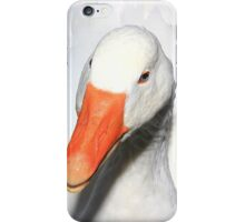 Domestic goose on Llangollen canal iPhone Case/Skin
