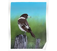 Butcher Bird Painting Poster